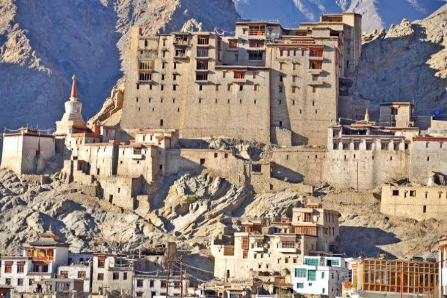 family and group tour leh
